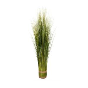 Plante herbes sauvages 1 m