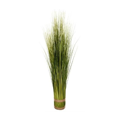 Plante herbes sauvages 1 m