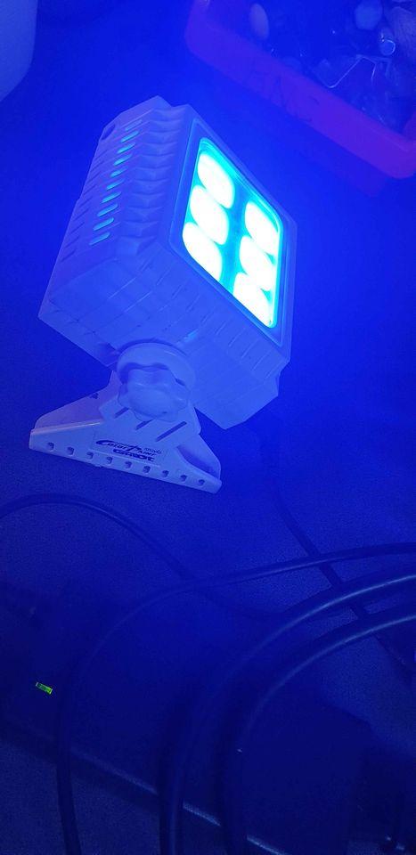 Projecteur led COB GHOST avec télécommande